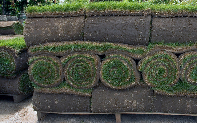 services-soil-sod